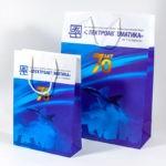 Размеры 32х44х12 см, 22х32х8 см, мелованная бумага, полноцветная печать, ламинация  Соф-тач